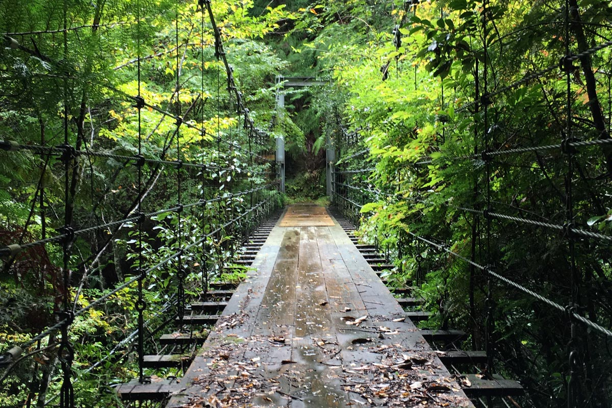 20161018_bridge